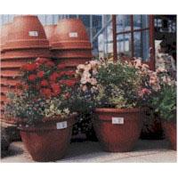 garden-centre-labels